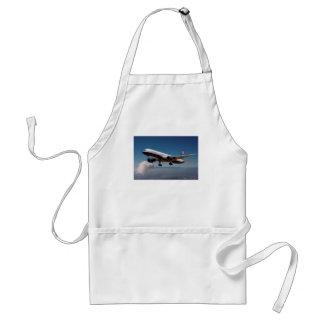 Jet over LA Adult Apron