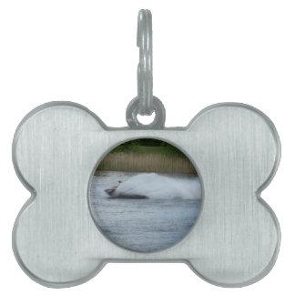 Jet Skier on Lake Pet Name Tag