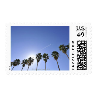 Jet Stream Over Palm trees Postage