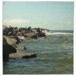 Jetty Rocks Inlet Pelican Sky Ft. Pierce Florida Napkin
