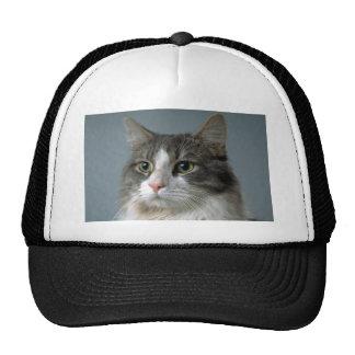 Jewel 1 trucker hat