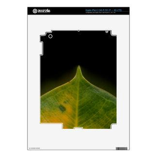 Jewel-colered banana leaf iPad 3 skin