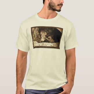 Jewel January 22, 2012 T-Shirt