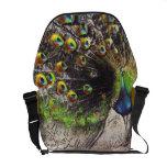 Jewel Tone Peacock Beauty~Full Bag Messenger Bag
