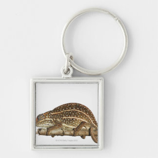 Jewelled chameleon, Campan's chameleon Silver-Colored Square Keychain