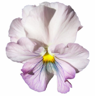 Jewelry - Pin - Left-Facing Ruffled Lavender Pansy Cutout