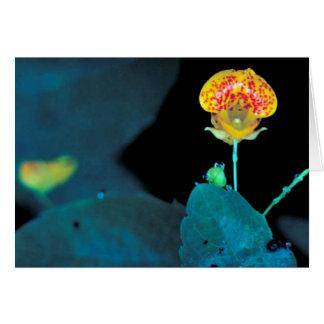 Jewelweed manchado tarjeta de felicitación