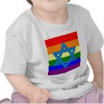 Jewish Gay Pride Flag T Shirt