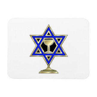 Jewish Star Rectangular Photo Magnet