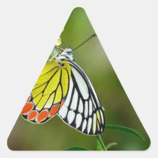Jezebel (Delias Eucharis) Butterfly Triangle Sticker