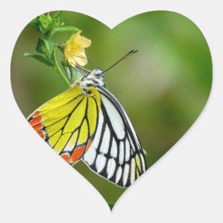 Jezebel (Delias Eucharis) Butterfly Heart Sticker