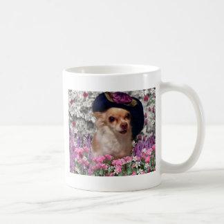 Ji de la ji en la taza de las flores - chihuahua