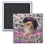 Ji en flores - perrito de la ji de la chihuahua en imán para frigorifico