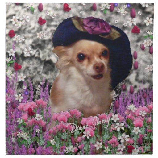 Ji en flores - perrito de la ji de la chihuahua en servilleta