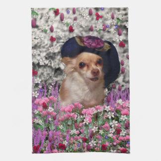 Ji en flores - perrito de la ji de la chihuahua en toalla de cocina
