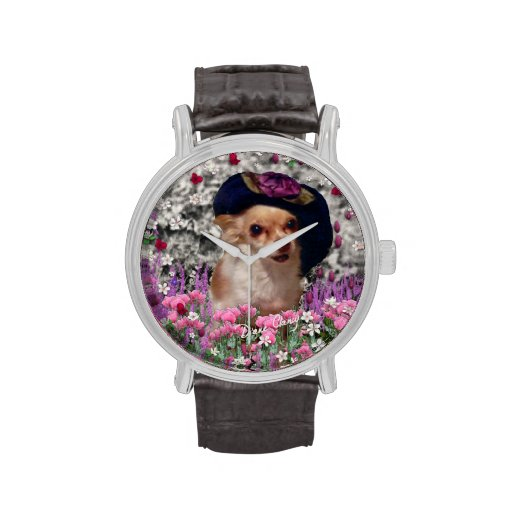 Ji en flores, perro de perrito de la chihuahua, go reloj