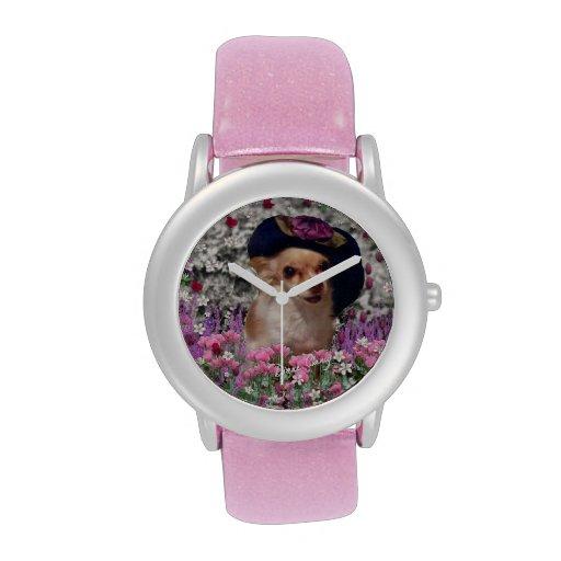 Ji en flores, perro de perrito de la chihuahua, go relojes