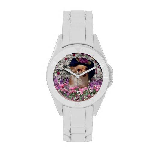 Ji en flores, perro de perrito de la chihuahua, go relojes de pulsera