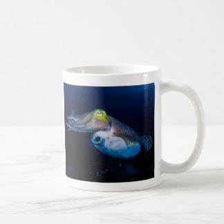 Jibias en la taza de café de la gran barrera de