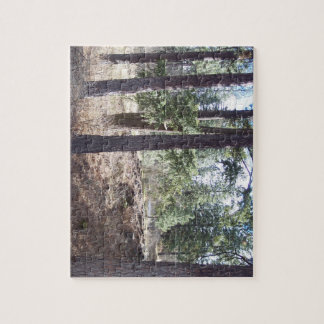 Jigsaw photo puzzle featuring urban forest.