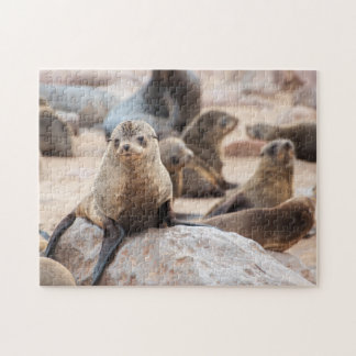 Jigsaw puzzle of a seal cub lying on a rock.