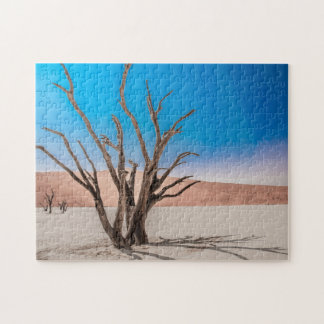 Jigsaw puzzle of Dessert Scape at Deadvlei