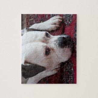 Jigsaw Puzzle: White Boxer Dog