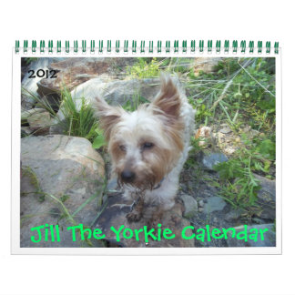 Jill The Yorkie Calendar