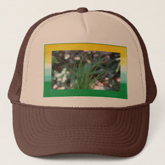 Jimmy Chives Hat