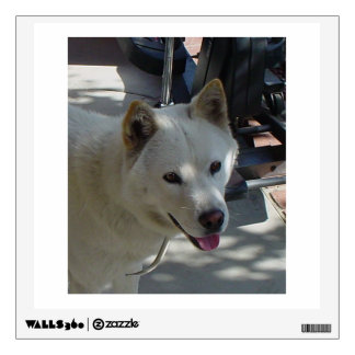 jindo.png wall decal