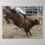 Jinete de Bull en el rodeo Poster