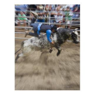 Jinete de Bull lanzado de toro Tarjetas Postales