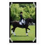 Jinete de la demostración del caballo del Dressage Postal