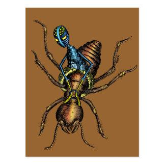 Jinete de la termita postal