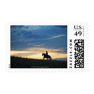Jinete de lomo de caballo 15 sellos