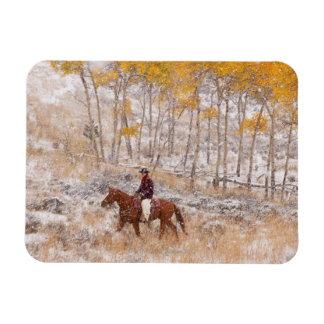Jinete de lomo de caballo 18 imanes rectangulares