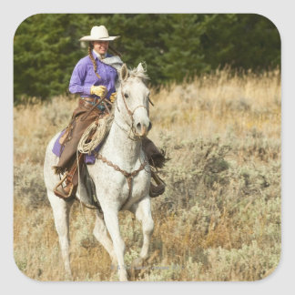 Jinete de lomo de caballo 20 pegatina cuadrada