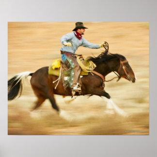 Jinete de lomo de caballo 23 póster