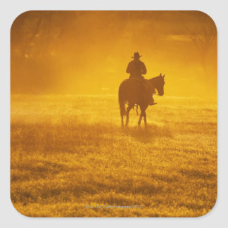 Jinete de lomo de caballo 24 pegatina cuadrada