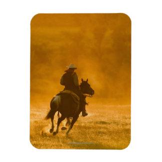 Jinete de lomo de caballo 3 imanes flexibles