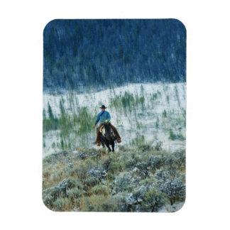 Jinete de lomo de caballo 4 iman de vinilo