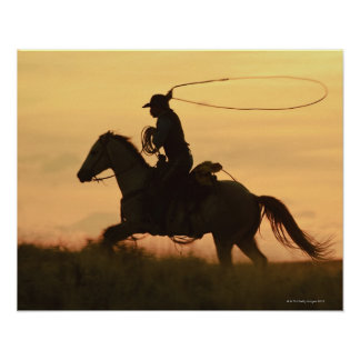Jinete de lomo de caballo 6 póster