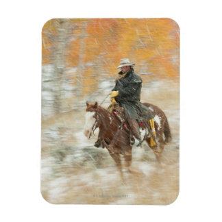 Jinete de lomo de caballo en lluvia imán flexible