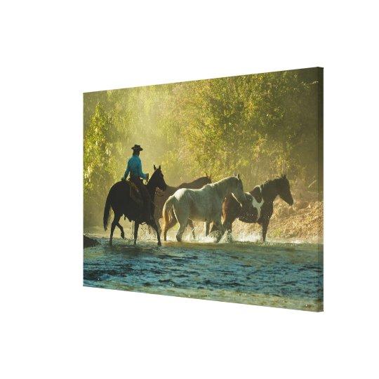 Jinete de lomo de caballo que reúne caballos impresión en lienzo