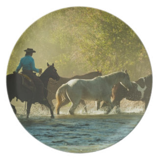 Jinete de lomo de caballo que reúne caballos plato de cena