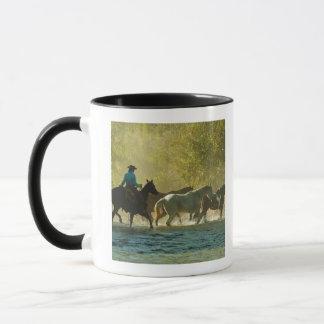 Jinete de lomo de caballo que reúne caballos taza