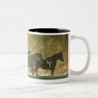 Jinete de lomo de caballo que reúne caballos taza de café de dos colores