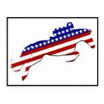 Jinete del Equestrian de los E.E.U.U. Postal