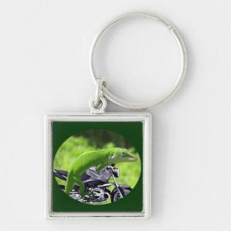 Jinete hawaiano verde del Gecko Llavero Cuadrado Plateado
