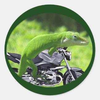 Jinete hawaiano verde del Gecko Etiquetas Redondas